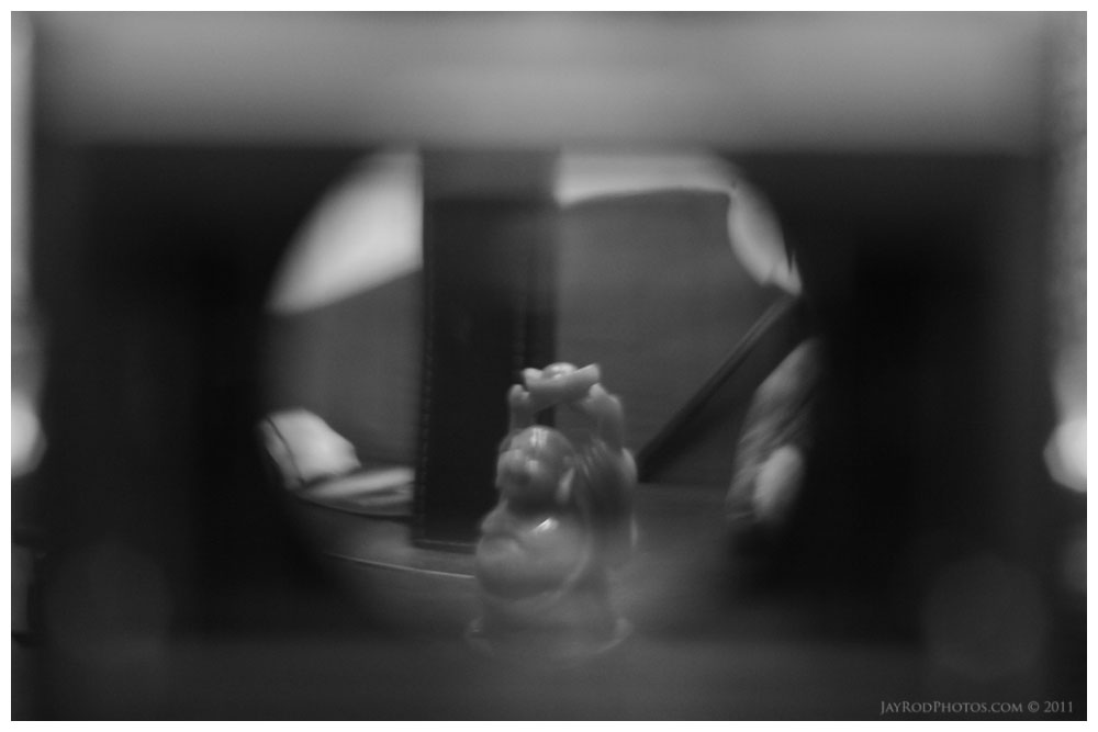 Buddah FOCUS - By Jay Rodriguez