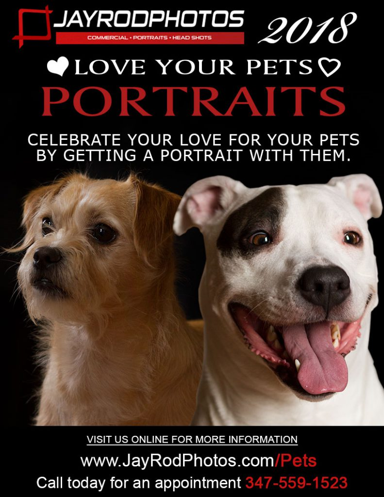 Love Your Pets Portraits - Photographed by Jay Rodriguez - JayRodPhotos.com